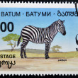 BATUMI - CIRCA 1994: A stamp printed in Batumi shows zebra, circa 1994 - Stock Photo