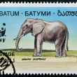 Stock Photo: BATUMI - CIRC1994: stamp printed in Batumi shows africelephant, circ1994