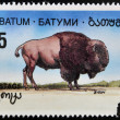 BATUMI - CIRCA 1994: A stamp printed in Batumi shows bison, circa 1994 - Stock Photo