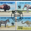 BATUMI - CIRCA 1994: A stamp printed in Batumi shows elephant, bison, zebra and cheetah, circa 1994 - Stock Photo