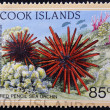 COOK ISLANDS - CIRCA 1998: A stamp printed in Cook Islands shows Red Pencil Sea Urchin - Heterocentrotus mammillatus, circa 1998 - Stock Photo