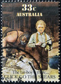 AUSTRALIA - CIRCA 1986: A stamp printed in Australia shows sheepshearing, Tar-boy is there, circa 1986 — Photo