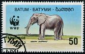 BATUMI - CIRCA 1994: A stamp printed in Batumi shows african elephant, circa 1994 — Stock Photo