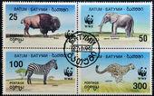 Batumi - circa 1994: pokazuje znaczek wydrukowany w batumi, słoń, bizon, zebra i gepard, circa 1994 — Zdjęcie stockowe