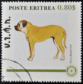 ERITREA - CIRCA 1984: A stamp printed in Eritrea shows a dog, bullmastiff, circa 1984 — Stock Photo