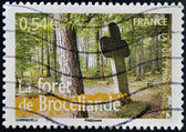 FRANCE - CIRCA 2006: A stamp printed in France shows Paimpont forest, circa 2006 — Stock fotografie