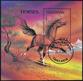 TANZANIA - CIRCA 1993: A stamp printed in Tanzania showing horse, circa 1993 — Foto de Stock