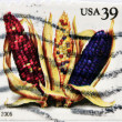 Stock Photo: UNITED STATES OF AMERIC- CIRC2006: stamp printed in USshows corn, circ2006