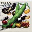 UNITED STATES OF AMERICA - CIRCA 2006: A stamp printed in USA shows beans, circa 2006 — Stock Photo