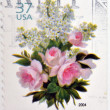 图库照片: UNITED STATES OF AMERIC- CIRC2004: stamp printed in USshows bouquet of flowers, circ2004