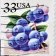 Royalty-Free Stock Photo: UNITED STATES OF AMERICA - CIRCA 1999: A stamp printed in USA shows blueberries, circa 1999