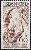 CZECHOSLOVAKIA - CIRCA 1958: Stamp printed in Czechoslovakia shows volleyball, circa 1958 — Foto Stock