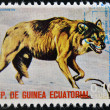 EQUATORIAL GUINEA - CIRCA 1974: Stamp printed in Guinea dedicated to endangered animals, shows Gray wolf, Europe,  circa 1974 — Stock Photo