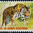 EQUATORIAL GUINE- CIRC1974: Stamp printed in Guinededicated to endangered animals, shows Bengal tiger, Asia, circ1974 — Stock Photo #24402031