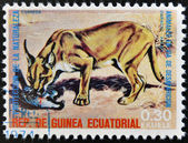 EQUATORIAL GUINEA - CIRCA 1974: Stamp printed in Guinea dedicated to endangered animals, shows caracal, Africa, circa 1974 — Stock Photo