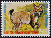 EQUATORIAL GUINEA - CIRCA 1974: Stamp printed in Guinea dedicated to endangered animals, shows lynx, Europe, circa 1974 — Stock Photo