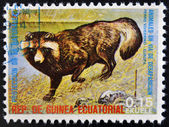 EQUATORIAL GUINEA - CIRCA 1974: Stamp printed in Guinea dedicated to endangered animals, shows Raccoon dog, Europe, circa 1974 — Stock Photo
