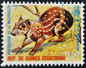 EQUATORIAL GUINEA - CIRCA 1974: Stamp printed in Guinea dedicated to endangered animals, shows Lowland paca, South America, circa 1974 — Stock Photo