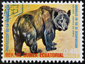 EQUATORIAL GUINEA - CIRCA 1974: Stamp printed in Guinea dedicated to endangered animals, shows American black bear, North America, circa 1974 — Stock Photo