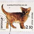 SWEDEN - CIRC1992: stamp printed in Sweden shows image of kitten, circ1992 — Foto Stock #25206777