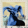 UNITED STATES OF AMERICA - CIRCA 2007: A stamp printed in USA  shows image of a goat, circa 2007 — Foto de Stock