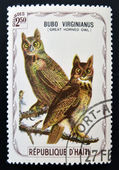 HAITI - CIRCA 1975: A stamp printed in Haiti shows Great horned owl, circa 1975 — Stock fotografie