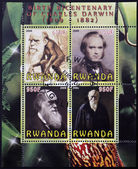 RWANDA - CIRCA 2009: Set de 4 stamps printed in Rwanda dedicated to Charles Darwin, circa 2009 — Zdjęcie stockowe