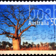 AUSTRALIA - CIRCA 2005: stamp printed in Australia shows boab, circa 2005  — Stock Photo