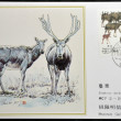 CHINA - CIRCA 1988: A stamp printed in China shows elk Pere David's deer, Elaphodus davidianus , circa 1988 — Stock Photo