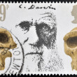 Stock Photo: UNITED KINGDOM - CIRC1981: Stamp printed in Great Britain showing Charles Darwin and Prehistoric Skulls, circ1981