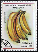 REPUBLICA MALAGASY - CIRCA 1992: A stamp printed in Madagascar shows Bananas, Musa, Fruit, circa 1992 — Stock Photo