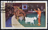 MONGOLIA - CIRCA 1986: A stamp printed in Mongolia shows trick with animals, circa 1986 — Stock Photo
