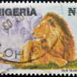 NIGERIA- CIRCA 1993: A stamp printed in Nigeria shows Lion, Panthera leo, circa 1993  — Stock Photo