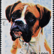 SAO TOME AND PRINCIPE - CIRCA 1995: A stamp printed in Sao Tome shows a dog, circa 1995 — Stock Photo #27577605