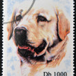 SAO TOME AND PRINCIPE - CIRCA 1995: A stamp printed in Sao Tome shows a dog, circa 1995 — Stock Photo #27577681
