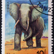 TANZANIA - CIRCA 1991: A stamp printed in Tanzania shows an elephant, circa 1991. — Stock Photo