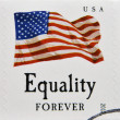 UNITED STATES OF AMERICA - CIRCA 2012: stamp printed in USA shows the image of the USA Flag, Equality, USA forever, circa 2012 — Stock Photo