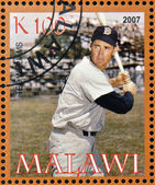 MALAWI - CIRCA 2007: A stamp printed in Malawi dedicated to greatest baseball players, shows Ted Williams, circa 2007 — Stock Photo