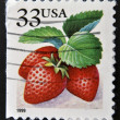 UNITED STATES OF AMERICA - CIRCA 1999: A stamp printed in the USA shows Strawberries, circa 1999 — Stock Photo #28902831