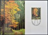 LIECHTENSTEIN - CIRCA 1980: A stamp printed in Liechtenstein dedicated to the forest in the four seasons shows Beech tree above Schaan in Autumn, circa 1980 — Zdjęcie stockowe