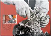 LIECHTENSTEIN - CIRCA 1982: A stamp printed in Liechtenstein dedicated to Man and work shows horticulture, circa 1982 — Stock Photo
