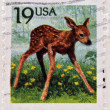 UNITED STATES OF AMERICA - CIRCA 1991: A stamp printed in USA shows Roe Deer (Capreolus capreolus), circa 1991  — Stock Photo