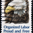UNITED STATES OF AMERICA - CIRCA 1980: A stamp printed in United States of America shows American Bald Eagle, Organized Labor, Proud and Free, circa 1980 — Stock Photo