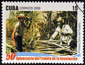 CUBA - CIRCA 2009: A stamp printed in cuba dedicated to 50 anniversary of the triumph of the revolution, shows first harvest of the people, circa 2009 — Stock Photo