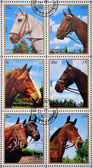 EMIRATE OF SHARJAH - CIRCA 1972: stamps printed in Emirate of Sharjah shows image of The horse (Equus ferus caballus), circa 1972. — Stock Photo
