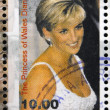 MORDOVIA - CIRCA 1998: stamp printed in Mordovia shows the princess of Wales, Diana, circa 1998  — Stock Photo