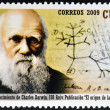 Stock Photo: CUB- CIRC2009: stamp printed in Cubshows image of Charles Darwin, circ2009