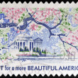 UNITED STATES OF AMERICA - CIRCA 2012: A stamp printed in USA dedicated to Lady Bird Johnson, shows Plant for more Beautiful America, circa 2012 — Stock Photo