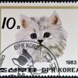 DPR KOREA - CIRCA 1983: A stamp printed in North Korea shows Persian cat, circa 1983 — Stock Photo