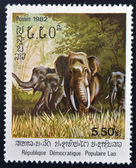 LAOS - CIRCA 1982: A stamp printed in Laos shows an Asiatic elephant, circa 1982 — Stock Photo
